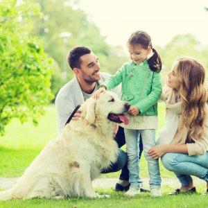 Animal Care and Animal Behaviour